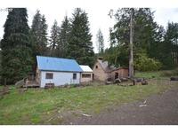Home for sale: 172 Bush Rd., Bingen, WA 98605