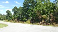 Home for sale: 0 Beechwood Cir., Burns, TN 37029
