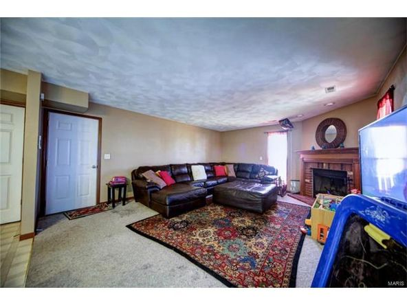 804 Country Meadow Ln., Belleville, IL 62221 Photo 29