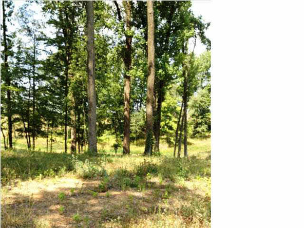 5980 Serenity Dr. Lot 5, Mount Vernon, IN 47620 Photo 27