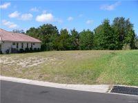 Home for sale: 1574 N. Dimaggio Path, Hernando, FL 34442