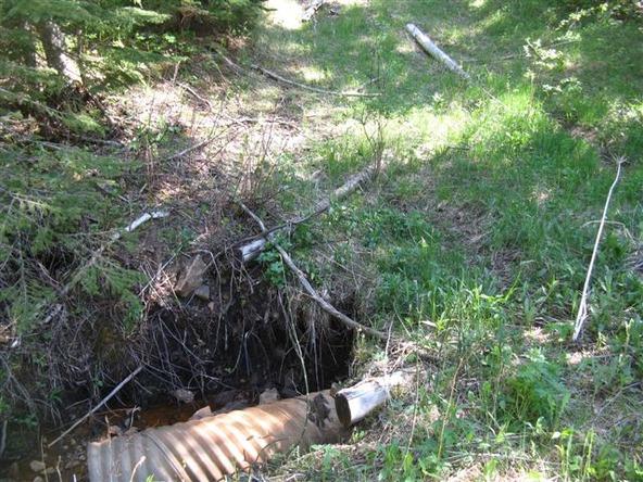 Cutting Mine Rd., Lead, SD 57754 Photo 36