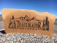 Home for sale: L15b1 Trail Blazer, Rigby, ID 83442