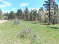 Home for sale: Tbd Bearlodge Ranch Rd., Sundance, WY 82729
