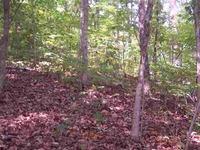 Home for sale: Tammerick Trail, Fair Play, SC 29643