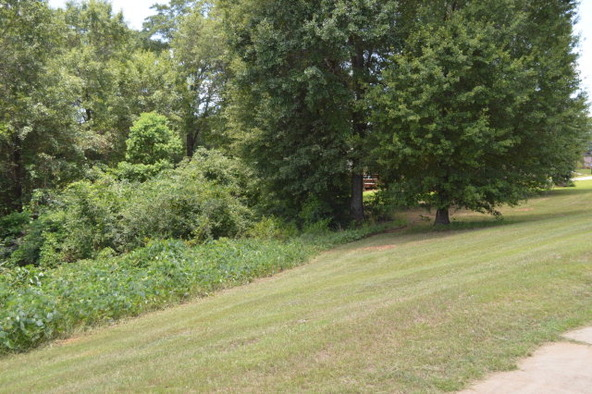 404 Turtleback Trail, Enterprise, AL 36330 Photo 45