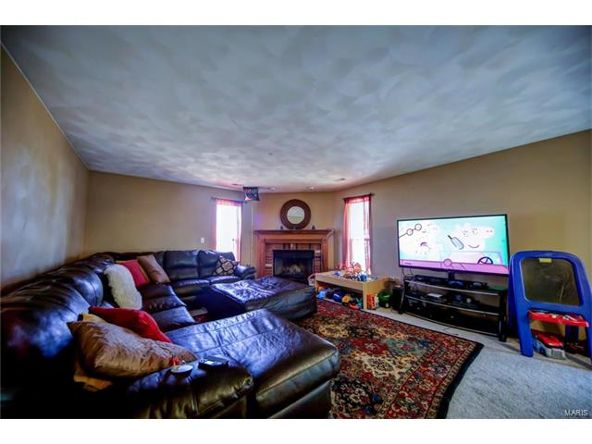 804 Country Meadow Ln., Belleville, IL 62221 Photo 28