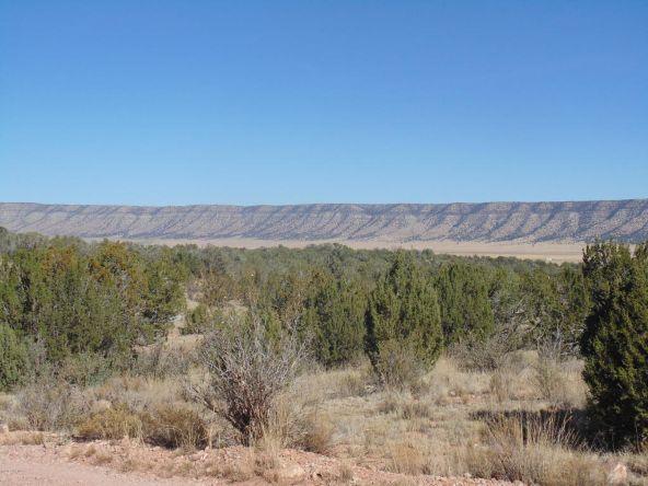 57174 N. Bridge Canyon Parkway, Seligman, AZ 86337 Photo 1