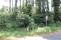 Home for sale: 0 Smoak Bridge Cir., Warwick, GA 31796