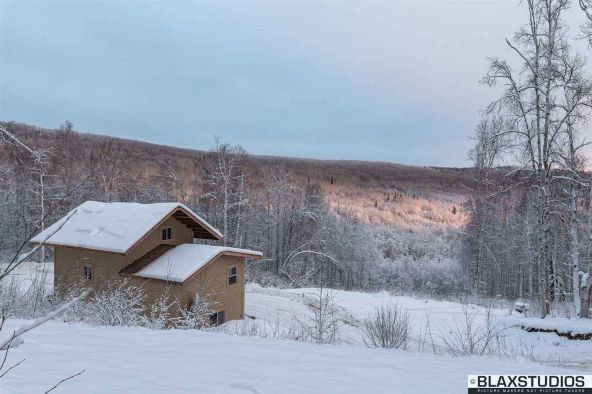 1150 Amanita Rd., Fairbanks, AK 99712 Photo 12
