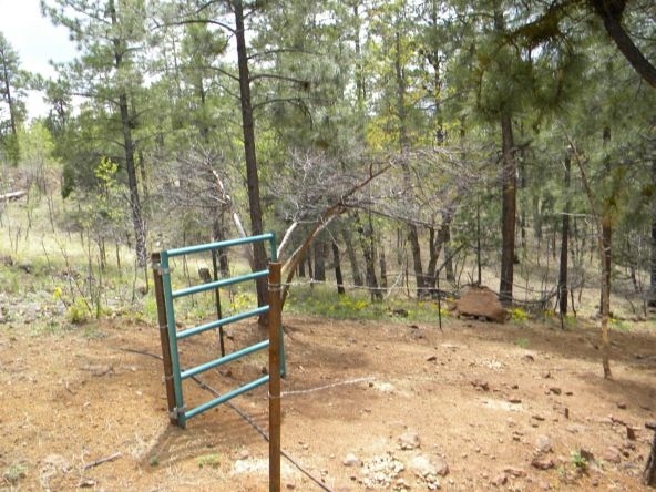 754 E. Rim Rd., Pinetop, AZ 85935 Photo 25