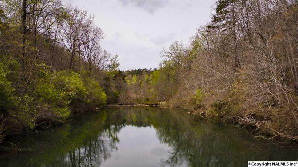 1020 County Rd. 628, Mentone, AL 35984 Photo 50