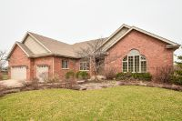 Home for sale: 22880 Lakeview Estates Blvd., Frankfort, IL 60423