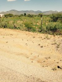 Home for sale: 4.5 Ac W. Camino de Manana, Huachuca City, AZ 85616