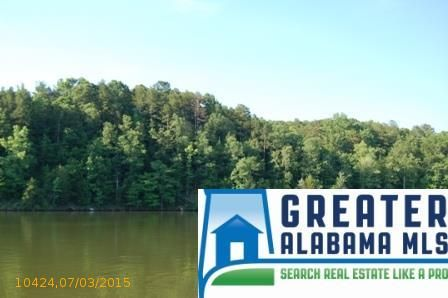 3 Rock Creek Co Rd. 4312, Wedowee, AL 36278 Photo 13