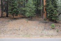 Home for sale: 667 E. Mountain Ridge Rd., Lake Almanor, CA 96137
