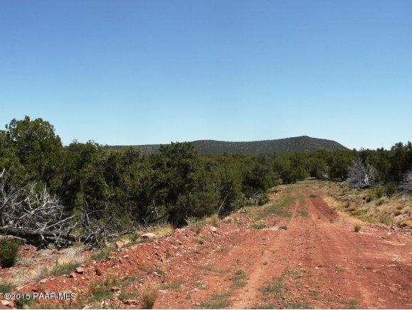 1024 Sierra Verde Ranch, Seligman, AZ 86337 Photo 6