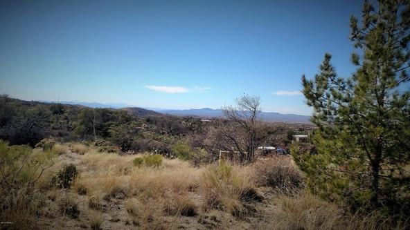 1224 W. Hackberry Way, Oracle, AZ 85623 Photo 6
