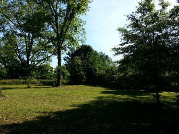 141 Pine St., Goshen, AL 36035 Photo 5