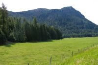Home for sale: Nna 371 Acres River Rd., Clark Fork, ID 83811