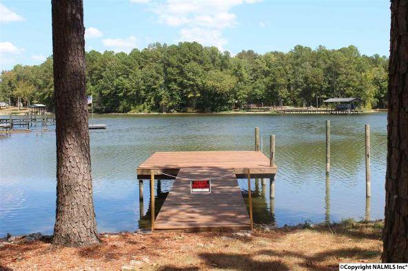 31 County Rd. 131, Cedar Bluff, AL 35959 Photo 25