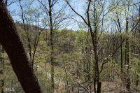 Home for sale: 0 Ranch Mountain Dr., Dahlonega, GA 30533