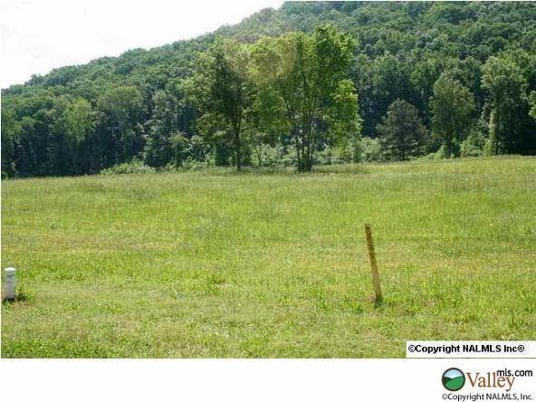 111 Lake Creek Dr., Guntersville, AL 35976 Photo 9