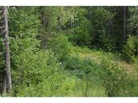 Home for sale: 00 Bull Run Rd., Northfield, VT 05663