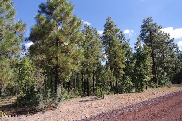 2850 W. Richardson Ln., Lakeside, AZ 85929 Photo 11