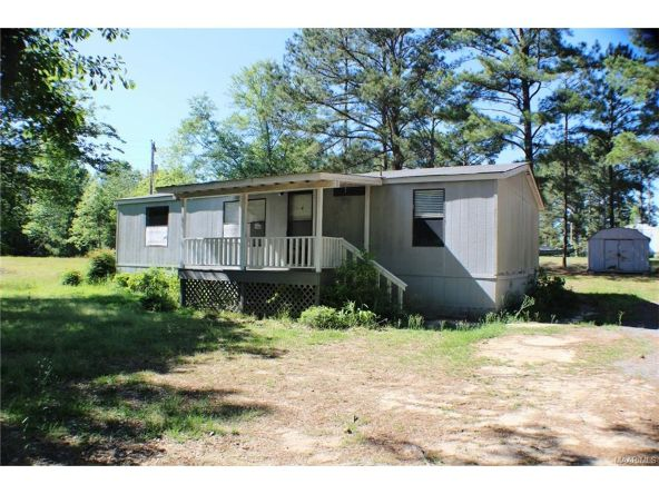 908 Mullins Rd., Eclectic, AL 36024 Photo 3