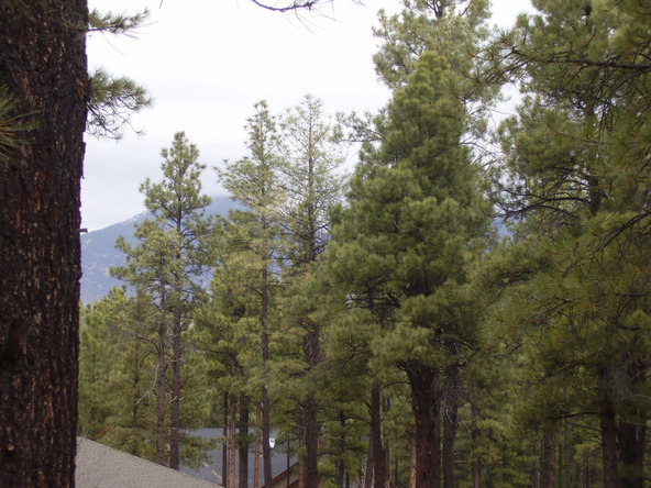 2750 N. Jason Way, Flagstaff, AZ 86001 Photo 8