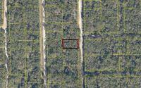 Home for sale: Tbd 181st St., Live Oak, FL 32060