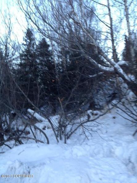 12801 Midori Dr., Anchorage, AK 99516 Photo 6