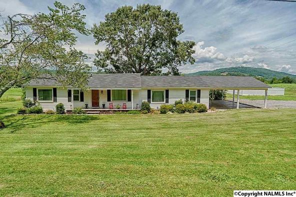 4525 Bakers Chapel Rd., Guntersville, AL 35976 Photo 1