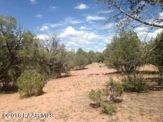 171 Friendship/Conwayden, Ash Fork, AZ 86320 Photo 26