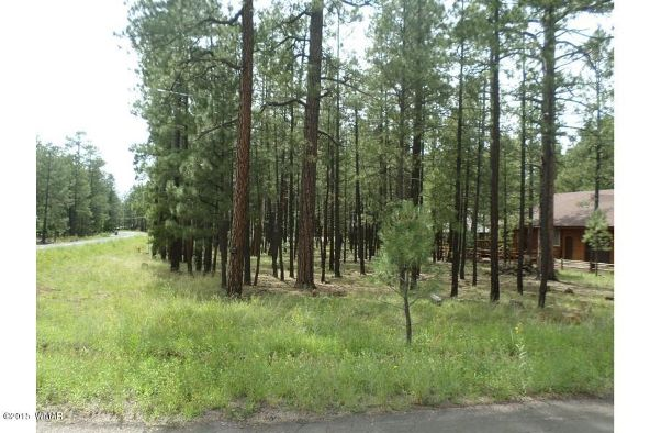 7828 Buck Springs Rd., Pinetop, AZ 85935 Photo 1