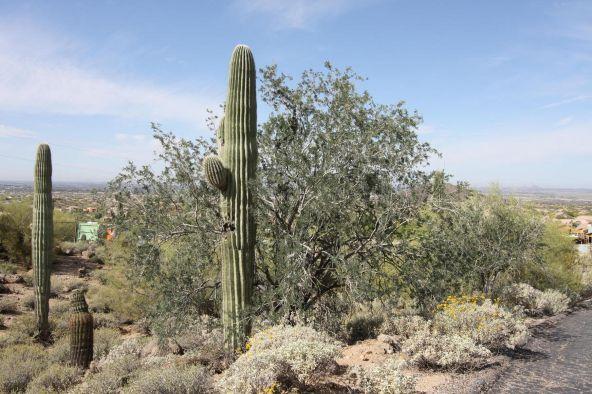 3845 N. Hawes Rd., Mesa, AZ 85207 Photo 12