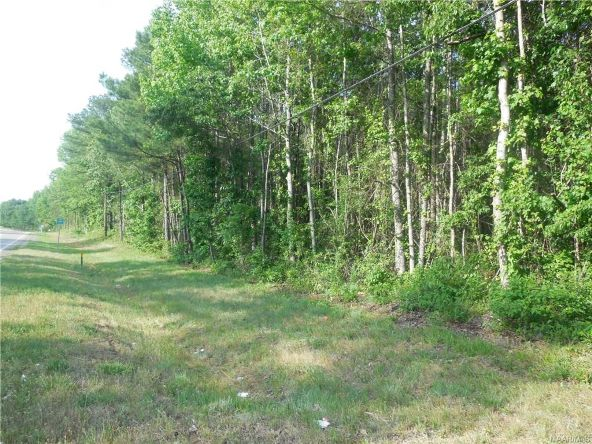 17462 Central Plank Rd., Eclectic, AL 36024 Photo 1