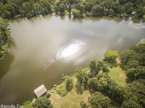 11 Lakeview Cove, Cabot, AR 72023 Photo 39