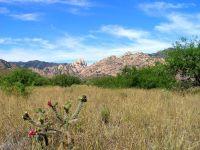 Home for sale: 200 Ac On Ironwood, Cochise, AZ 85606