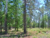 Home for sale: Lot 14 Watermark, Hortense, GA 31543