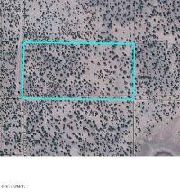 Home for sale: Tbd Conestoga, Show Low, AZ 85901