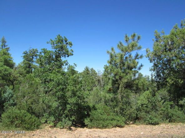 3120 W. Snowberry Loop, Show Low, AZ 85901 Photo 2