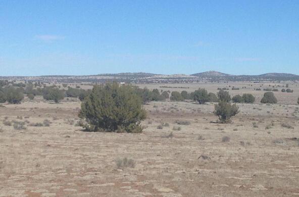 24 Off Of Antelope Run, Ash Fork, AZ 86320 Photo 4