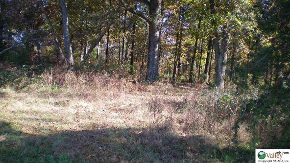 Lot13 County Rd. 684, Sylvania, AL 35988 Photo 3