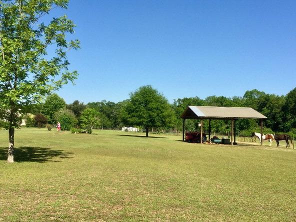 1156 Newton Creek Rd., Dothan, AL 36305 Photo 5