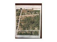 Home for sale: Cora Paper Ave., Orange City, FL 32763