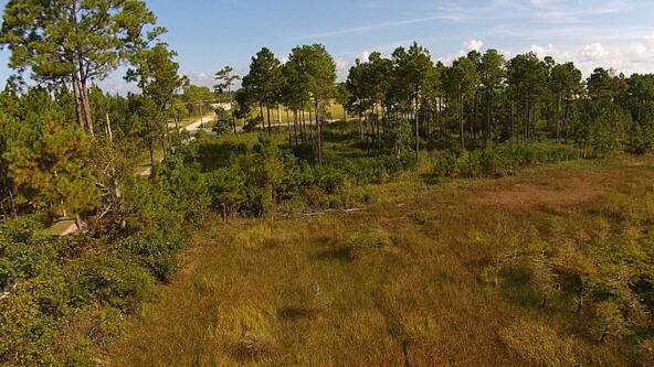 2 Canal Rd., Orange Beach, AL 36561 Photo 23