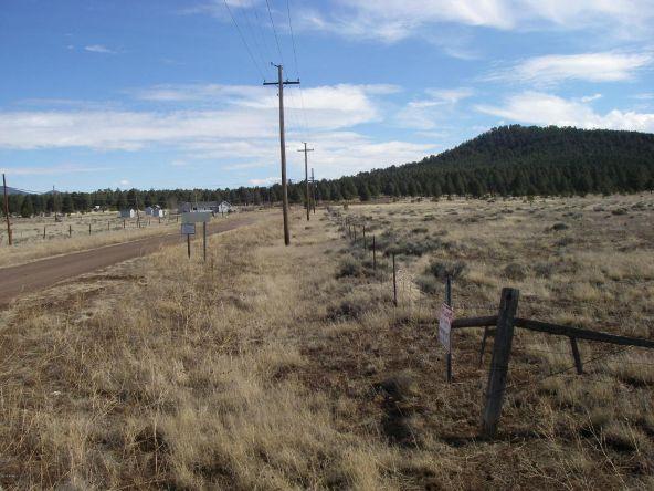 3460 E. Mountain Man Trail, Williams, AZ 86046 Photo 8