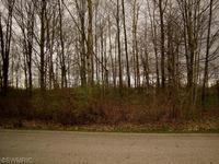 Home for sale: 255 Piper Cove, 7, Bailey, MI 49303